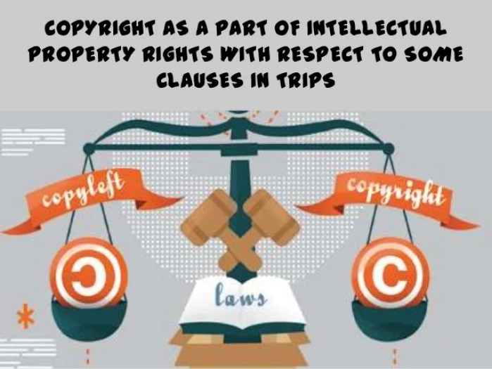 IPR and Copyrights