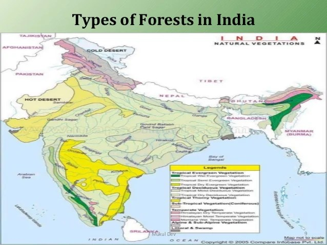 Forest survey of india, dehradun. Forest Resources Of India