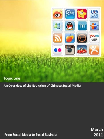 CIC 2011 White Paper  From Social Media to Social Business Topic 1  A        3