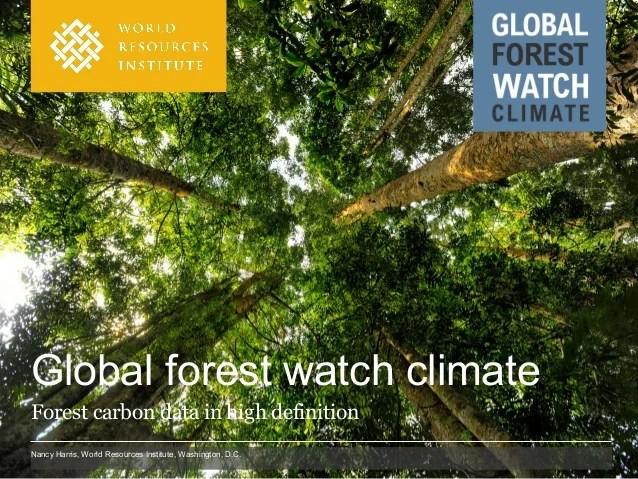 Appen förlitar sig på en. Global Forest Watch Climate