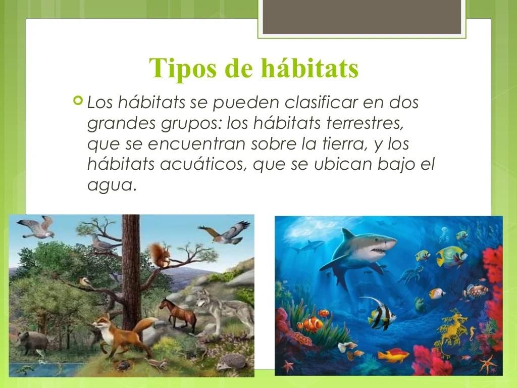 Ppt Habitat Clase 1