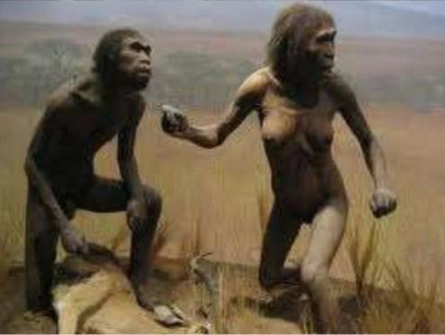 Resultado de imagen para homo erectus fuego