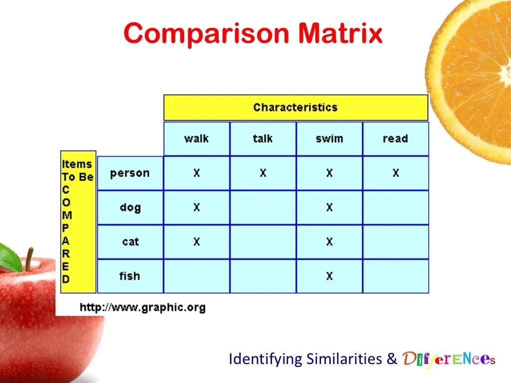 Comparison Matrix Identifying Similarities