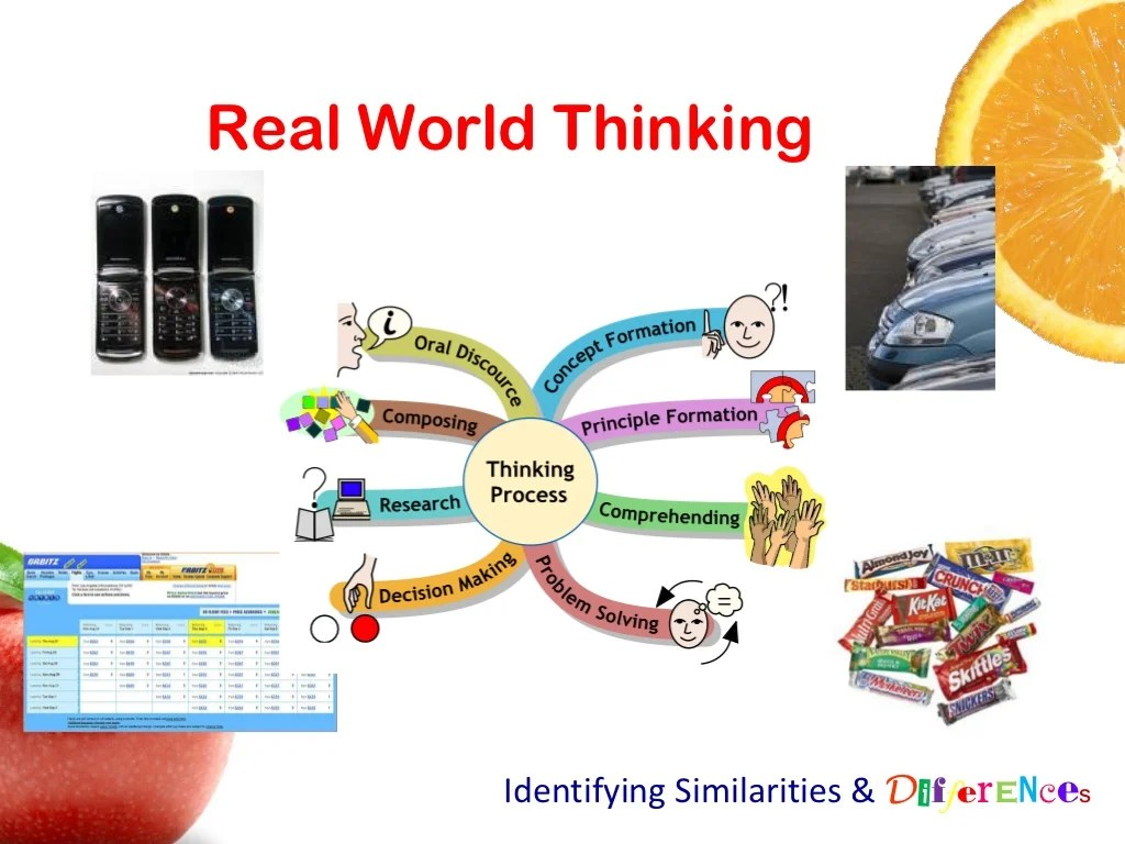Real World Thinking Identifying Similarities