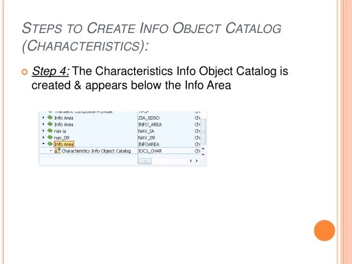 STEPS TO CREATE INFO OBJECT CATALOG (CHARACTERISTICS):  Step 4: The Characteristics Info Object Catalog is created & appe...