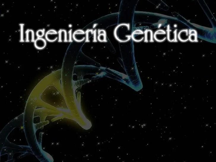 Ingenier 237 A Gen 233 Tica