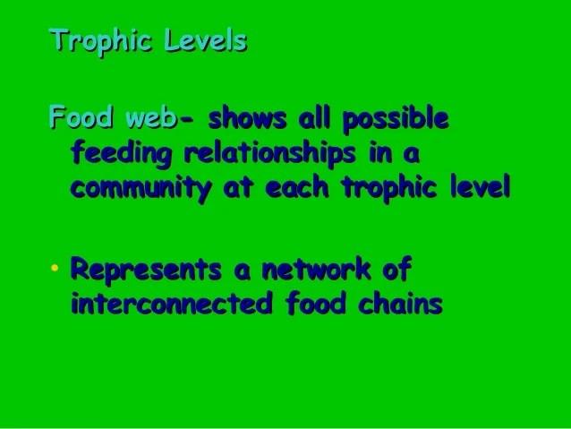 Web Sea Deep Biome Food