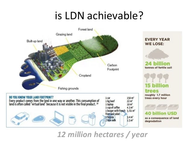 Image result for land degradation neutrality (LDN)