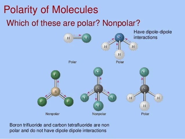 Polar Molecules Vs Nonpolar Molecules