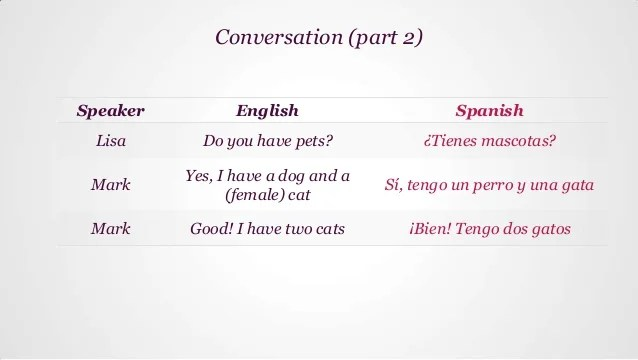 How Say Dog Spanish