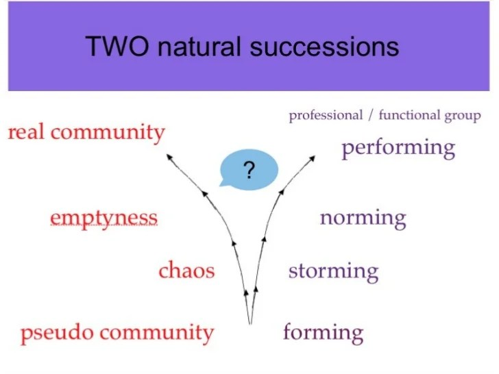 TWO natural successions pseudo community  forming chaos storming emptyness norming real community performing professional ...