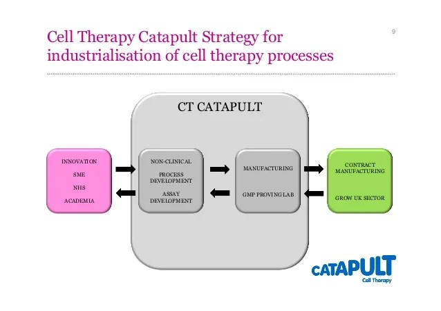Autologous and Allogeneic Cell Therapy Industrialisation ...