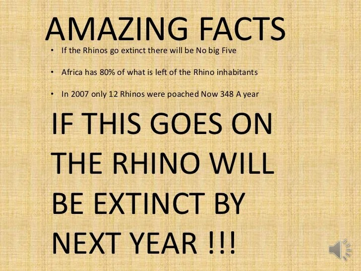 Image result for save the rhinos