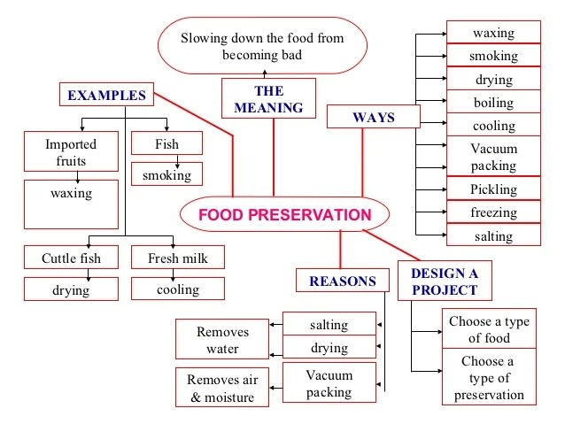 Mind Map Water Pollution