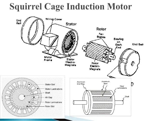 Squirrel Cage Motor Diagram  impremedia