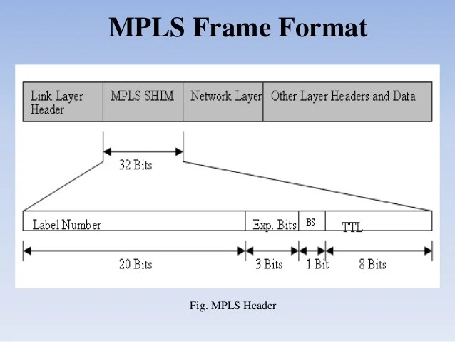 mpls tp header arrangement for the purpose of essay
