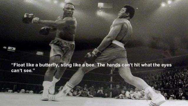 T Your Can Your Sting Bee Hands Float Can T See Hit Butterfly What Eyes