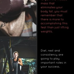 Muscle Building Tips For Fantastic Results