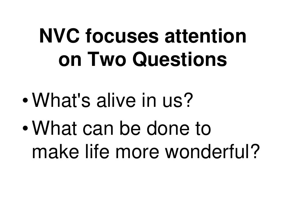 Image result for nvc focuses on two questions