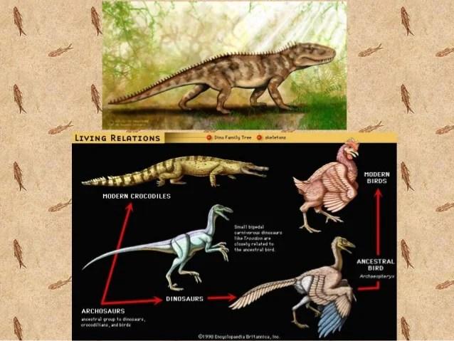 Dinosaurs Earth Timeline