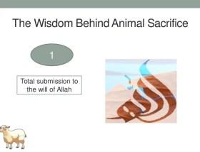 Animal Sacrifice in Islam