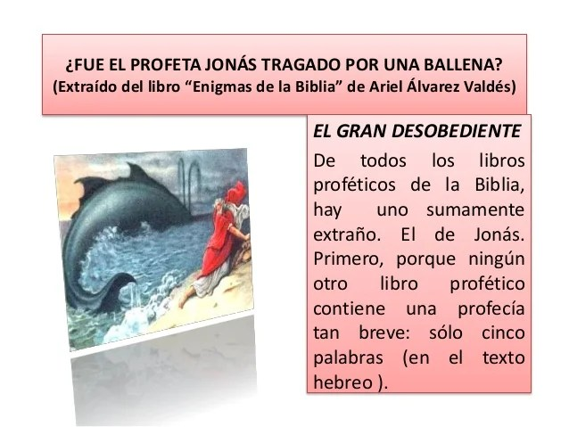 Resultado de imagen para jonas ballena biblia