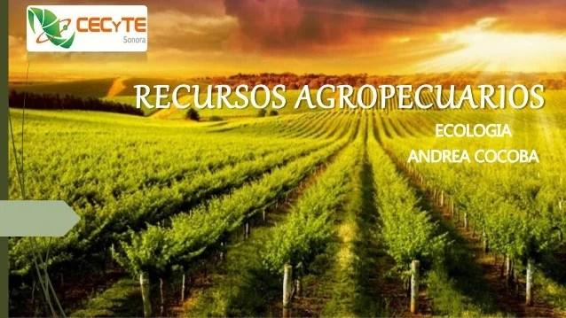 Recursos agropecuarios