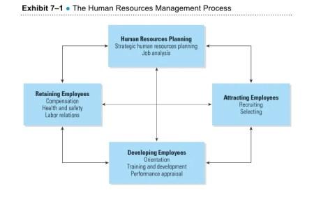 Human Resources Development Process 4k Pictures 4k Pictures