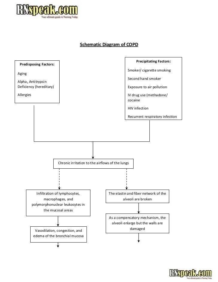 Schematic diagram of copd