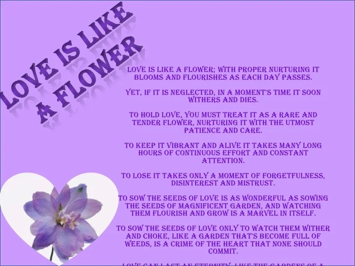 How To Keep Flowers In A Vase Alive. Communicate Science ...
