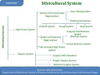 thanks to dan gilmore, umn college . Silvicultural System