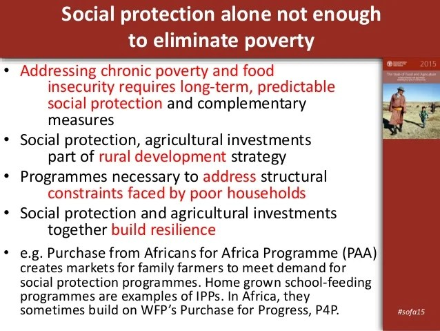 The State of Food and Agriculture 2015 - Social protection ...