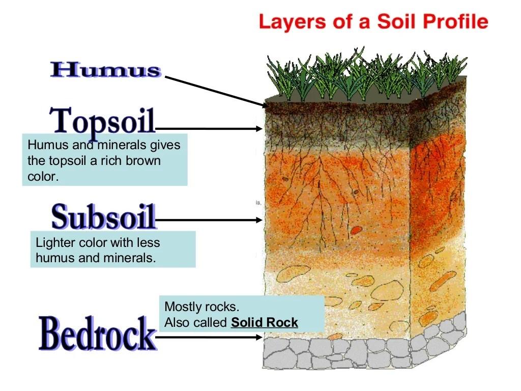 Soil 1