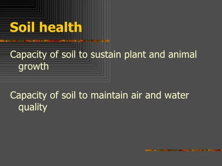 Soil, importance