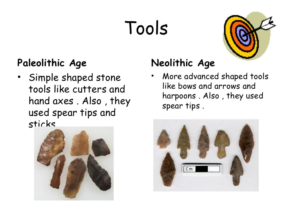 The Differences Between Paleolithic And Neolithic Ages