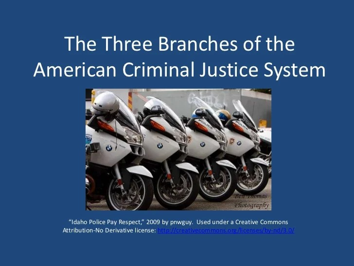 The Three Branches of the American Criminal Justice System