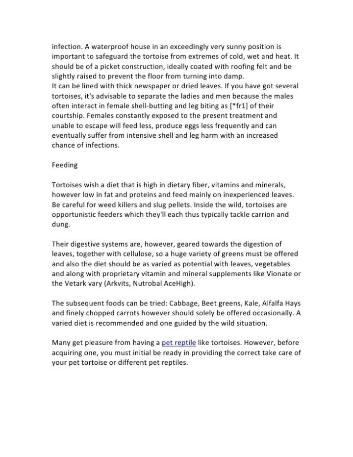 word essay on army values  mistyhamel