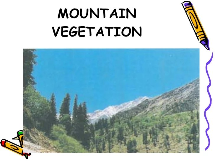 in 1942 a british forest guard in roopkund, india made an alarming discovery. Vegetation In India