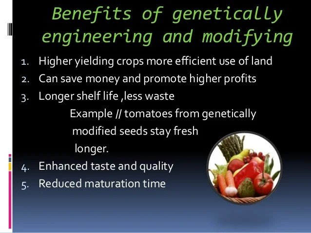 An Overview of the GMO Debate