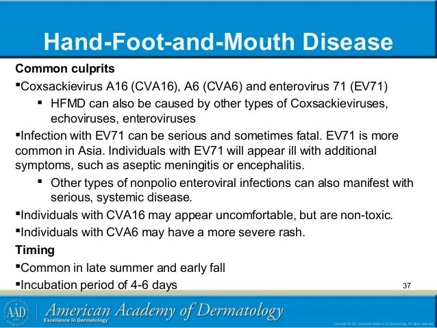 Hand Foot And Mouth Indents Middle