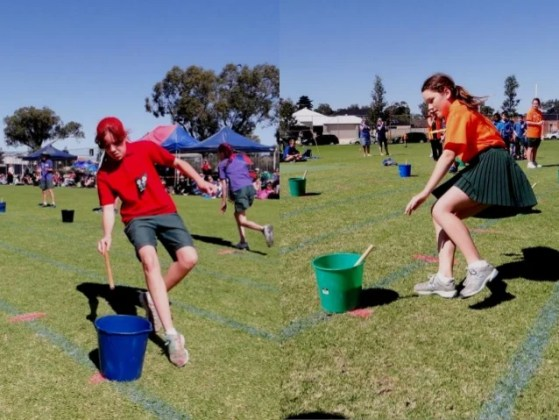 Wattle Grove Primary School Faction Athletics Carnival 2013   Games      Junior Championship  Winners and Runners Up