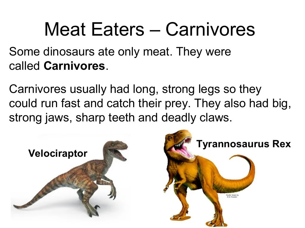 What Did Dinosaurs Eat Powerpoint