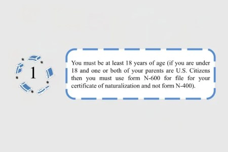 Free Fillable Form 2018 Us Citizenship Form N Free Fillable Form