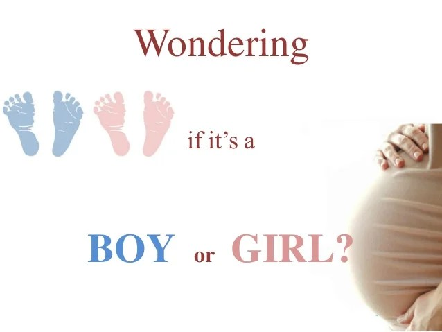 Wondering if it is a Baby Boy or girl?