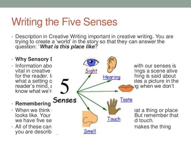 Five Sense Vivid About Examples Language About