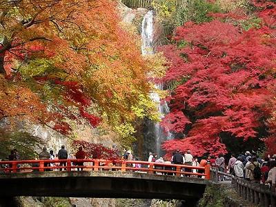 「箕面滝 紅葉」の画像検索結果