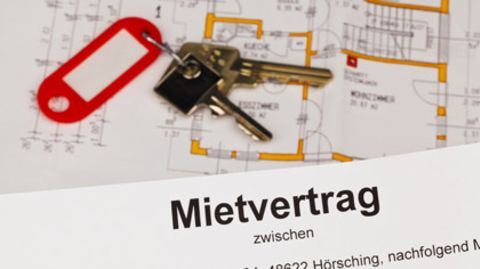download mustermietvertrag stern de