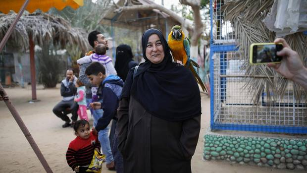 Visitors to the zoo before the evacuation. The park was one of the few attractions in Gaza: