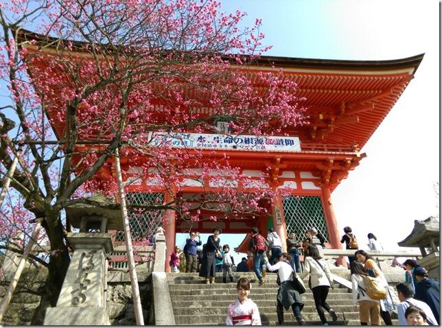 11_thumb7 Kyoto-清水坂 好吃好逛