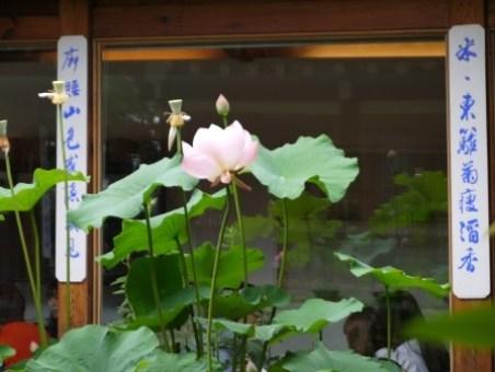 clip_image029 Seoul-北村八景 來首爾看韓屋